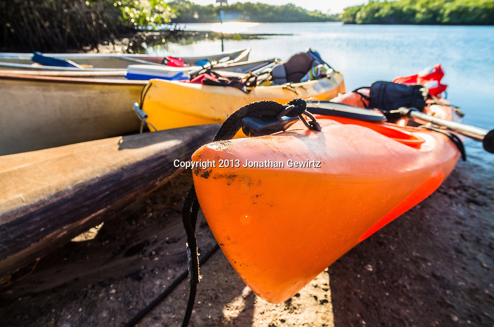 Closeup view of kayaks and canoes beached on a sunny river bank. <br />