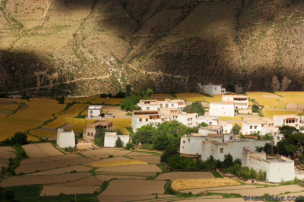A traditional Tibetan village set among beautiful fields of barley near Xiangcheng, China.