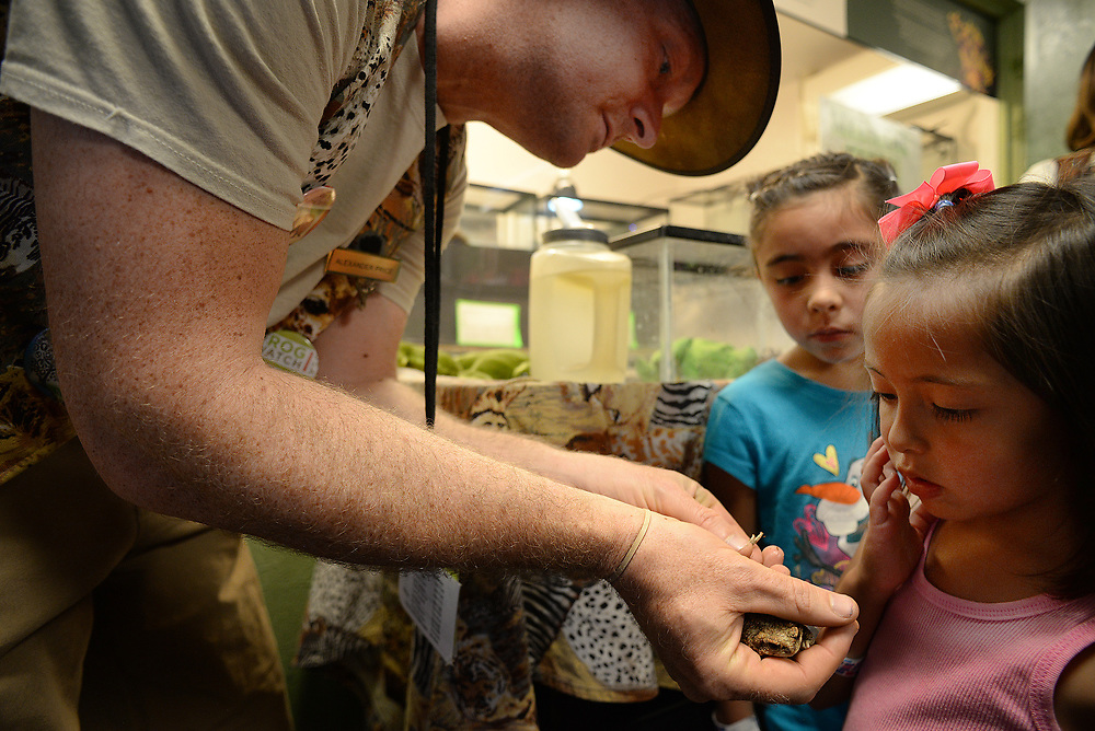 apl041317a/ASECTION/pierre-louis/JOURNAL 0412317<br /> Rio Grande Zoo docent Alexander Price,, left, shows a rare frog to 5 year-old Carolina Sandoval,, center and her cousin Mikayla Roybal ,, also 5 of Tijeras   .Photographed on Thursday April 13, 2017. .Adolphe Pierre-Louis/JOURNAL