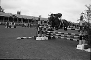 RDS Horse Show.  Dandy, owned by John Cowan and ridden by Robert Taylor, clearing the last jump to win 1st place in the Childrens Jumping Competition.<br /> 08.08.1963