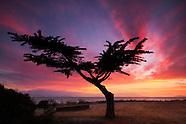 San Francisco East Bay Photos
