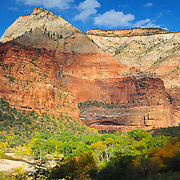 Fall Color along the Virgin River contrasts with the Red Rock of Zion National Park