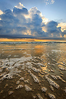Dramatic thunderstorm at sunrise on a Outer Banks beach.