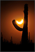 An annular solar eclipse in progress is seen from Ironwood Forest National Monument near Avra Valley, Arizona, USA, in the Sonoran Desert.  The eclipse peaked at 84% at this location northwest of Tucson.