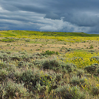 A storm rolls in over the Great Plains of Montana in the American Prairie Reserve region of C.M. Russell National Wildlife Refuge. South of Malta in Phillips County, Montana.