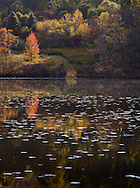A pariticularly beautiful time to visit Welkinweir happens to be in the fall. That reflects my personal bias, as we were married there in the fall.