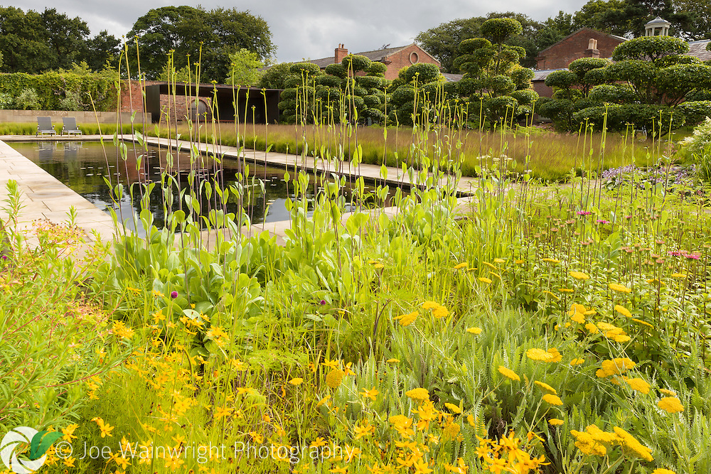 A border, rich in summer yellows, in the Walled Garden at Cogshall Grange, Cheshire - designed by Tom Stuart-Smith