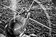 """Spectacular black and white photographic image of a P-51 Mustang """"Cripes A' Mighty"""" up really close, taken air to air over the Arizona desert"""