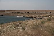 Iraq, Kurdistan: View of Mosul dam. Alessio Romenzi