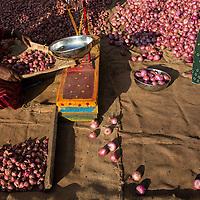 Sellers in Madurai morning market, Tamil Nadu, India