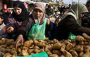 Palestinian women purchase potatoes at a Friday market in Rafah, Gaza January 16, 2009. Rafah residents have found ways to settle into a somewhat normal routine, venturing to market, to pray, and to visit friends despite the ongoing siege and bombing of the Gaza strip by Israeli forces. (Photo by Scott Nelson/World Picture Network for the New York Times)