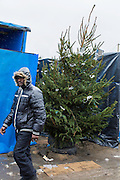A Christmas tree sits in the le Jungle refugee camp.