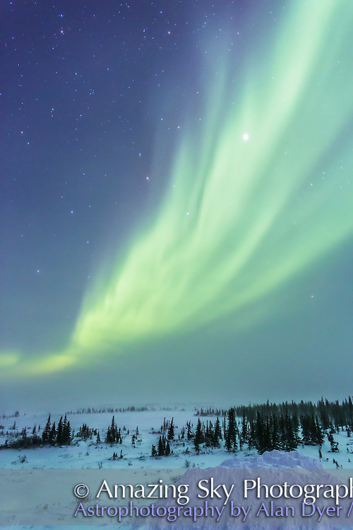 The aurora on the night of February 20, 2015 from Churchill Manitoba from the Churchill Northern Studies Centre. Leo is at left, Jupiter right of centre at top. The temperature was -32° C with a windchill of -50 or so. The aurora brightened about 9:30 pm local time for a while then faded into dim arcs and patchiness by 11 pm. Everyone had a good time shooting selfies with the aurora as a background. I shot with the Canon 6D and 24mm lens, at exposures from 8 to 15 seconds at f/2.8 and ISO 3200 to 4000.