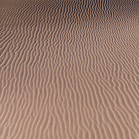 http://Duncan.co/pattern-on-sand-dune