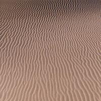 http://Duncan.co/pattern-on-sand-dune