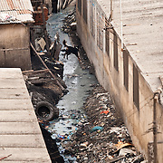 A dog leaps over a polluted ditch between homes in Agbogbloshie, a slum in Ghana's capital, Accra.