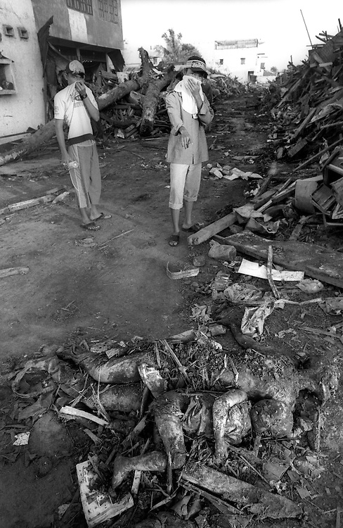 The body of a child in the arms of an adult are pointed out amongst the rubble that was Banda Aceh. On December 26th 2004 an earthquake followed by a Tsunami struck Aceh causing massive loss of life.