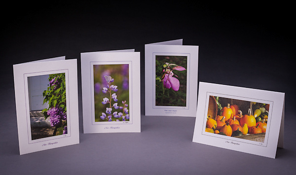 This collection features NH state symbols: the lilac, karner blue butterfly, pink lady's slipper, and the pumpkin.  The set includes two of each design, a total of 8 cards.<br />