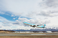 Korean Air Cargo jet taking off from Ted Stevens Anchorage International Airport in Southcentral Alaska with the Chugach Mountains in the background. Spring. Afternoon.