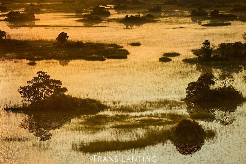Palm islands at sunset  in Xigira lagoon, Okavango delta, Botswana