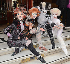 7 JULY 2014 Cats Photocall