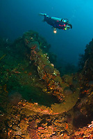 Shipwrecks in Bali, Ambon and Rota (Mariana Islands)