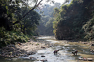Men search for crawfish in the Bagmati river. Sacred to Buddhists and Hindus, the river flows among Kathmandu's temples, bathing areas, and cremation platforms.