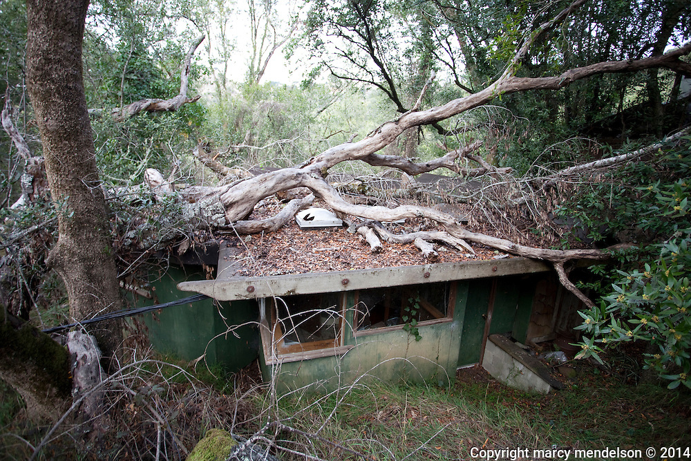 A modest house that conceals a refurbrished Airstream trailer overlooking an overgrown valley.  The dense forest is reclaiming all these buildings.  The Califoria parks department will tear down all these structures in the next few decades if no official Historic Status is awarded.