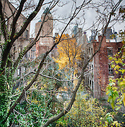 A shot of a tenement building back yard in Manhattan on the westside.