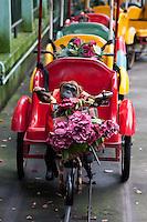 Children's fair ground ride at Shanghai zoo China