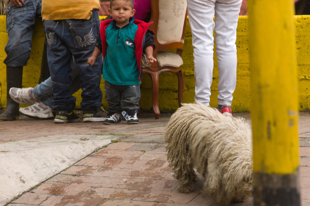 A shaggy dog and a small child in Bogotá, Colombia.