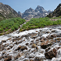 WY00618-00...WYOMING - North Fork Cascade Canyon below Lake Solitude in Teton National Park.