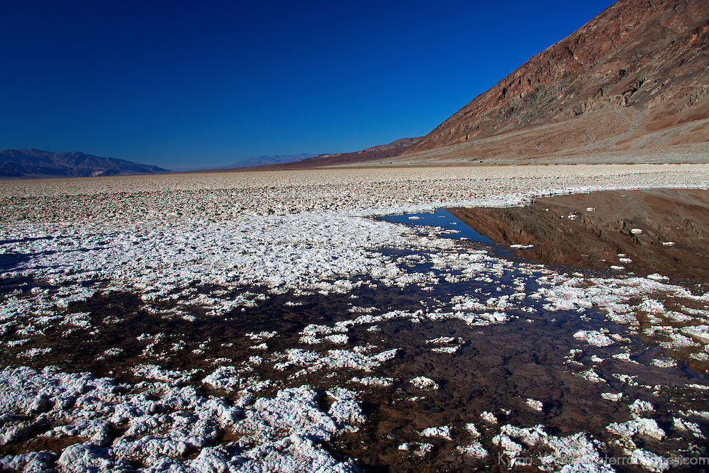 USA, California, Death Valley. Spring-fed pool at Badwater Basin, the lowest point in North America.