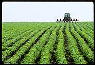UKRAINE 30801: COLLECTIVE FARM