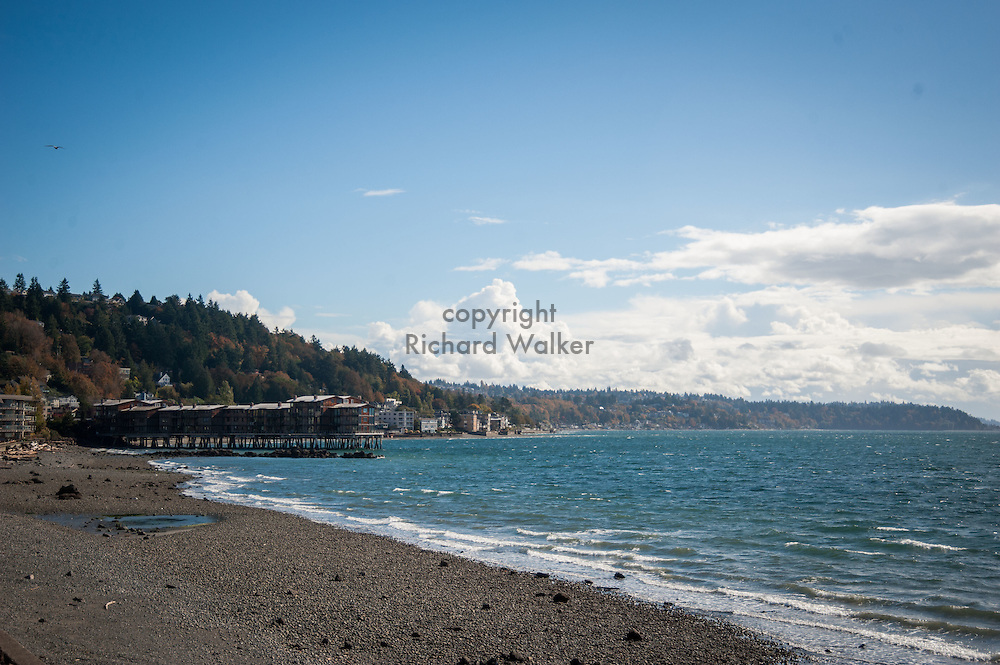 2016 October 18 - Harbor West Apartments and homes as seen looking south along the shore at Charles Richey Sr Viewpoint on Beach Drive SW, Alki, West Seattle, WA, USA. By Richard Walker
