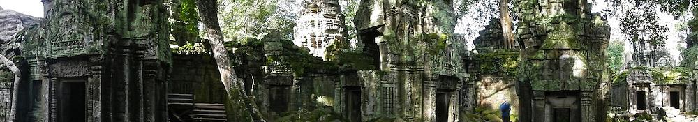 Ta Prohm Jungle Temple (Angkor Complex)