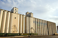 The giant grain concrete grain elevator complex towers over downtown Hereford, TX in the Panhandle region just west of Amarillo, TX.