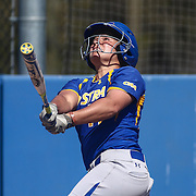 Hofstra University Infielder Michaela Transue (17) hits a home run in the top of sixth inning to put the Pride up 5-4 Saturday, April 16, 2016, at Delaware softball stadium in Newark, Delaware.