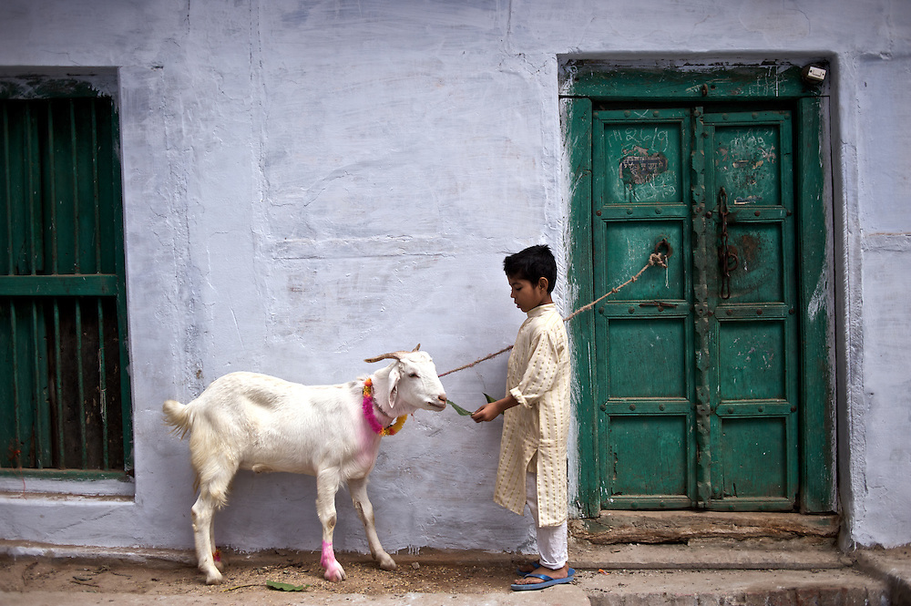 "Bakra Eid is also known as the ""Festival of Sacrifice"" in the Muslim world, a celebration commemorating Abraham's willingness to sacrifice his son. Since God provided a ram in his place, a goat is sacrificed in memorial of this event."