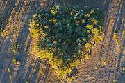 Aerial Landscape- @Martine Perret - Margaret River aerial shot.  27 February 2014