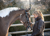 'Equestrian selection'