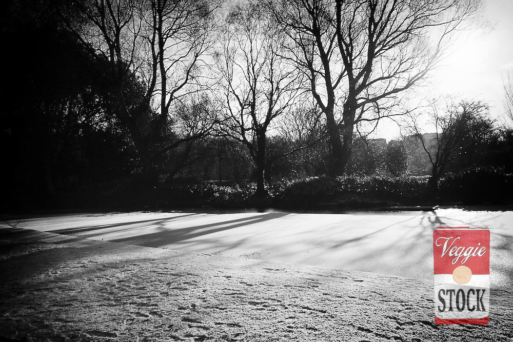 Snow in St. Stephen's Green on New Year's Day 2010, Dublin, Ireland.