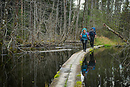 Alaska, USA to Yukon Territory, Canada, September 2014. Hiking from the trailhead at Dyea to Finnigan's Point campsite through dense Pacific rainforest, swamps and beaver dams, we pass the rusty remnants of the Gold Rush. Starting at Dyea, Alaska, The Chilkoot Trail retraces the Klondike Gold Rush route that most stampeders followed to get to the gold fields. Steeped in Klondike Gold Rush history and scattered with relics from the past, the famous Chilkoot Trail is also referred to as the longest open air museum in the world. This rugged 55 kilometer wilderness trek is a world-renowned hiking trail and Canada's largest National Historic Site. Photo by Frits Meyst / MeystPhoto.com