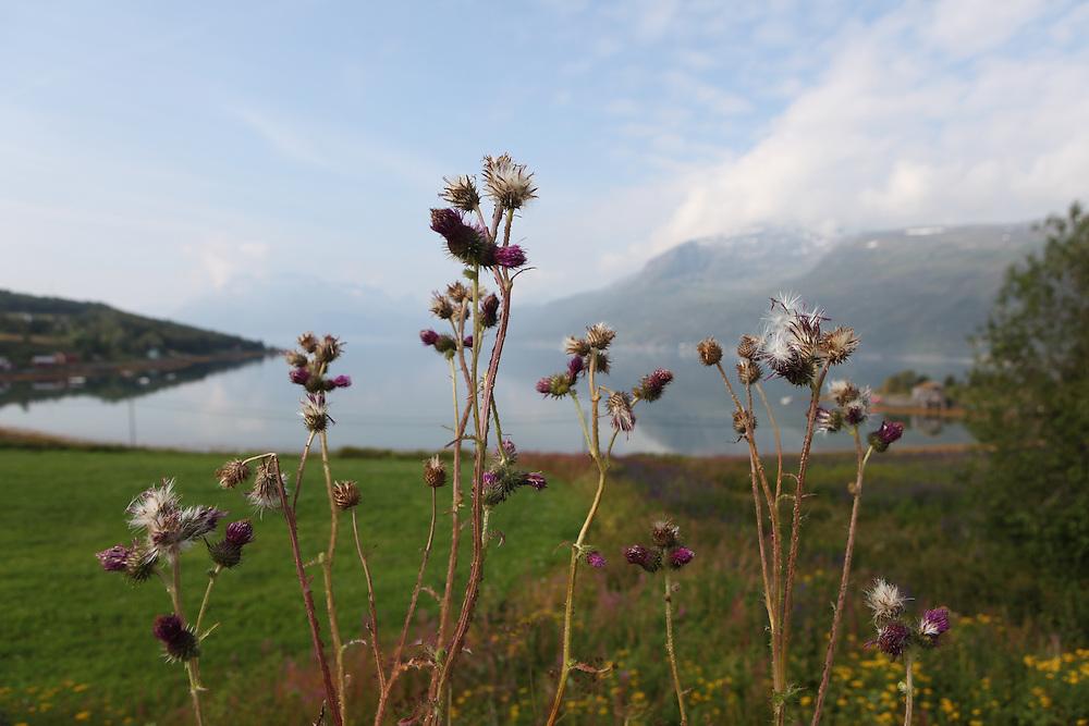 Lapland, Norway, Troms