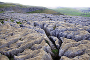 The much-weathered, deeply-fissured area of limestone pavement above Malham Cove, seen here in early morning light, with the eastern rim of the cove cliffs in the background. <br />