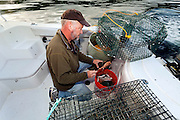 WA11858-00...WASHINGTON - Jim Johansen loads up a bait tube for a shrimp pot while fishing on the Puget Sound. (MR# J5)