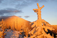 Alpenglow on Mount Henry at sunset. Mount Henry Roadless Area in the Purcell Mountains, northwest Montana.