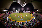 SAN JUAN, PUERTO RICO FEBRUARY 2: Puerto Rico and Venezuela take the field for the opening ceremony prior to the game on February 2, 2015 in San Juan, Puerto Rico at Hiram Bithorn Stadium(Photo by Jean Fruth)
