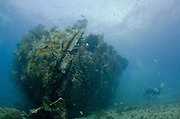 Underwater photography - beautiful seascape and sealife captured while diving on the Benwood Shipwreck in Key Largo, FL.