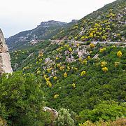Islands: Sardinia 2014-16